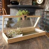 [LIFE STYLE] Wooden Display Box / L